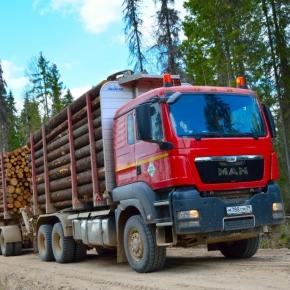 ГК УЛК обновит лесозаготовительную технику на 5 млрд руб.