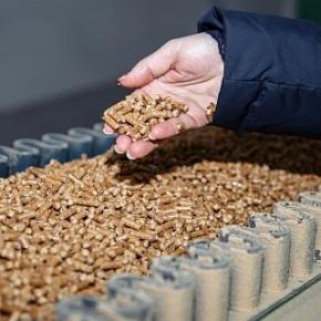 Segezha Group увеличивает производство и экспорт пеллет в Европу
