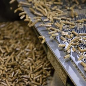 Экспортные поставки пеллет из России продолжают расти